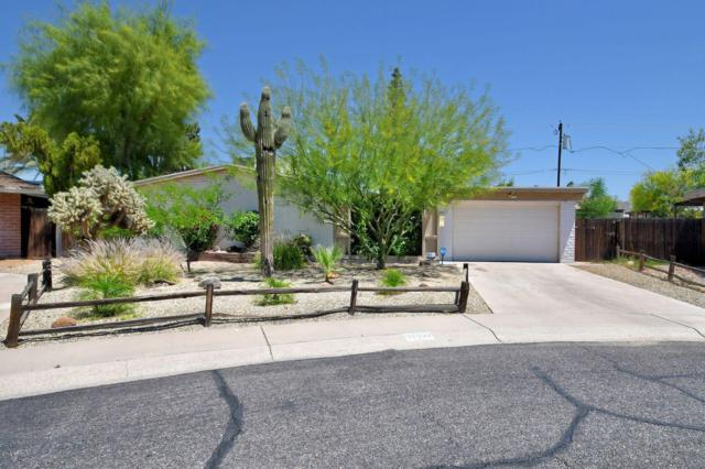 15221 N 29TH Drive, Phoenix, AZ 85053 (MLS #5916734) :: CC & Co. Real Estate Team