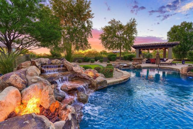 21424 N 38TH Place, Phoenix, AZ 85050 (MLS #5916737) :: CC & Co. Real Estate Team