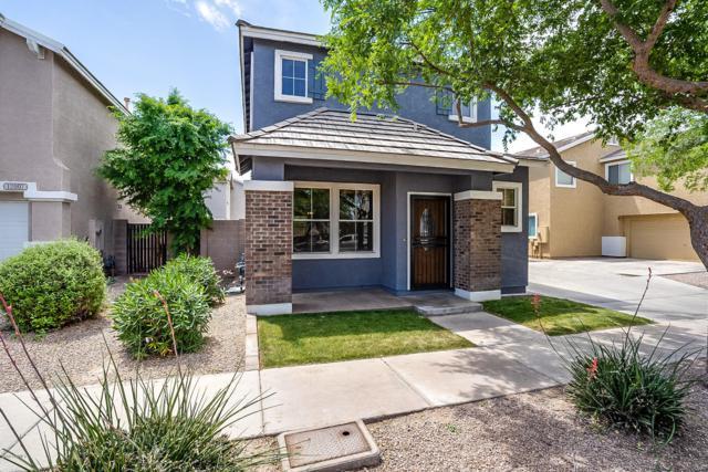 12011 W Belmont Drive, Avondale, AZ 85323 (MLS #5916769) :: Yost Realty Group at RE/MAX Casa Grande