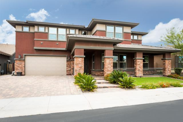 3124 E Half Hitch Place, Phoenix, AZ 85050 (MLS #5916775) :: CC & Co. Real Estate Team