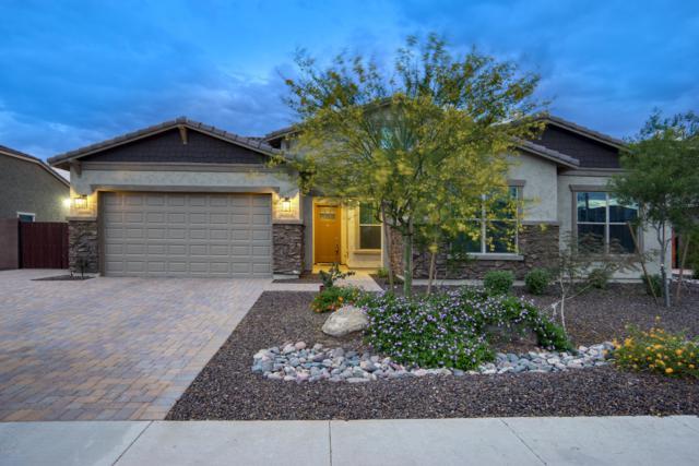 9343 W Cashman Drive, Peoria, AZ 85383 (MLS #5916795) :: The Kathem Martin Team