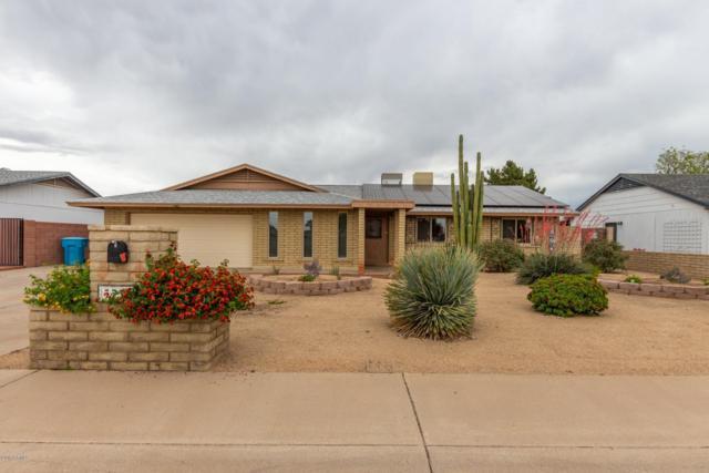 3738 W Malapai Drive, Phoenix, AZ 85051 (MLS #5916800) :: The Kathem Martin Team