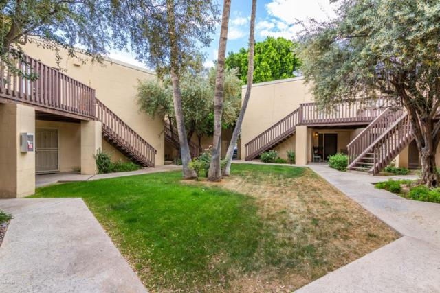 6240 N 16TH Street #33, Phoenix, AZ 85016 (MLS #5916823) :: The Kathem Martin Team