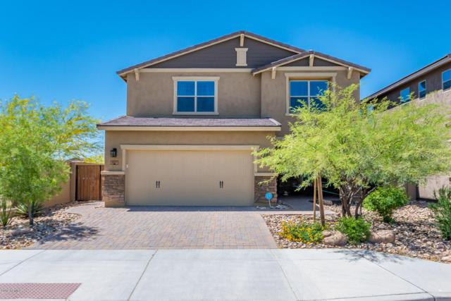 2957 W Woburn Lane, Phoenix, AZ 85085 (MLS #5916839) :: Yost Realty Group at RE/MAX Casa Grande
