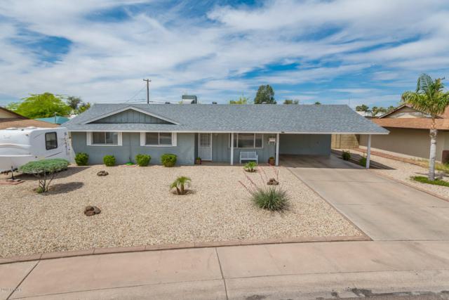 6224 N 34TH Drive, Phoenix, AZ 85017 (MLS #5916847) :: The Kathem Martin Team