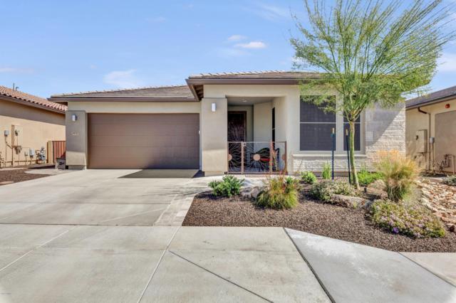 29757 N 133RD Avenue, Peoria, AZ 85383 (MLS #5916859) :: The Kathem Martin Team