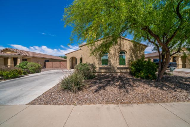 960 W Ayrshire Trail, San Tan Valley, AZ 85143 (MLS #5916886) :: Riddle Realty