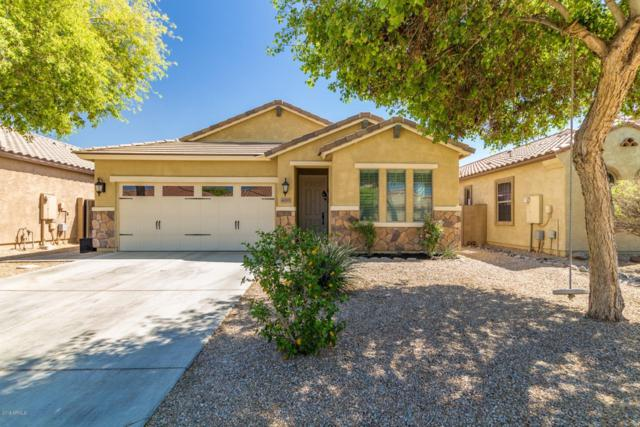 4205 E Alamo Street, San Tan Valley, AZ 85140 (MLS #5916889) :: Yost Realty Group at RE/MAX Casa Grande