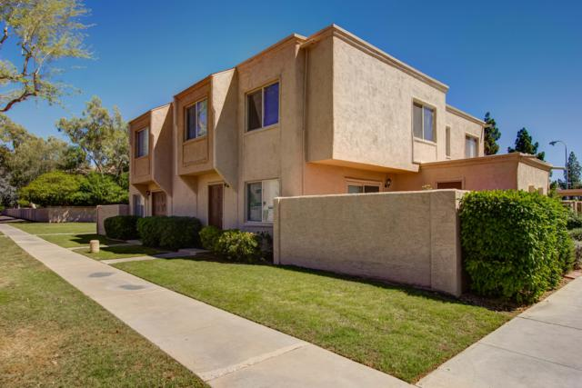 4203 N 81ST Street, Scottsdale, AZ 85251 (MLS #5916913) :: The Kathem Martin Team