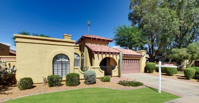 8786 E Appaloosa Trail, Scottsdale, AZ 85258 (MLS #5916921) :: The Kathem Martin Team
