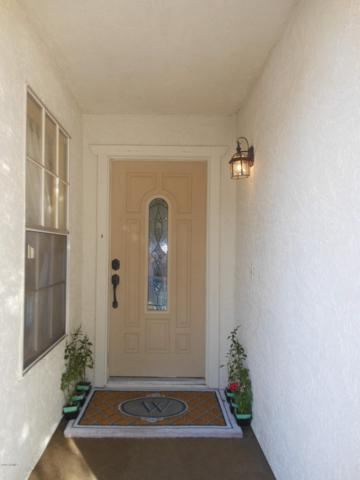 18661 N 43RD Drive, Glendale, AZ 85308 (MLS #5916931) :: Yost Realty Group at RE/MAX Casa Grande