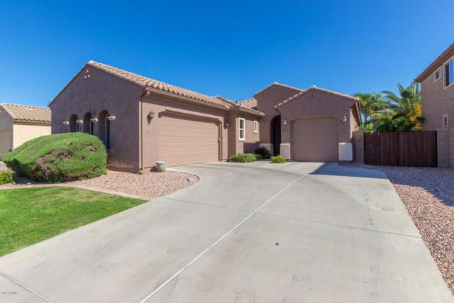 4854 E Palm Beach Drive, Chandler, AZ 85249 (MLS #5916933) :: The Kenny Klaus Team