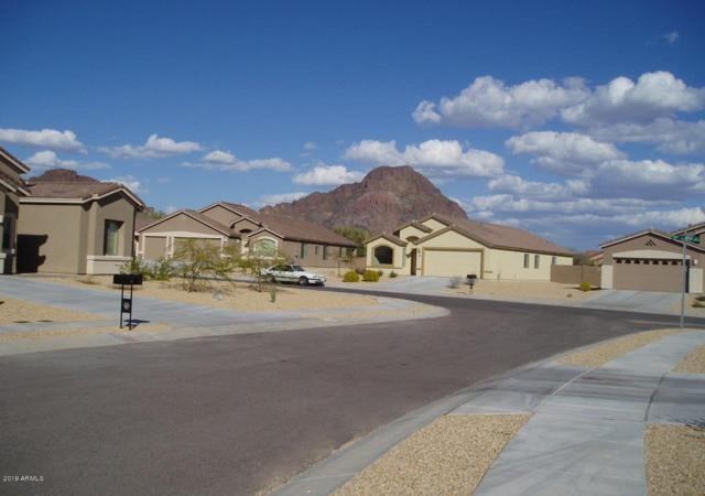 5863 W Evening Petal Lane, Tucson, AZ 85735 (MLS #5916947) :: CC & Co. Real Estate Team