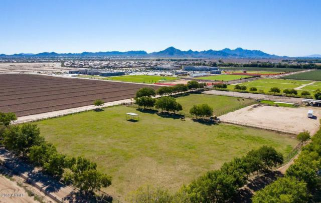 38092 N Sangria Lane, San Tan Valley, AZ 85140 (MLS #5916973) :: The Carin Nguyen Team