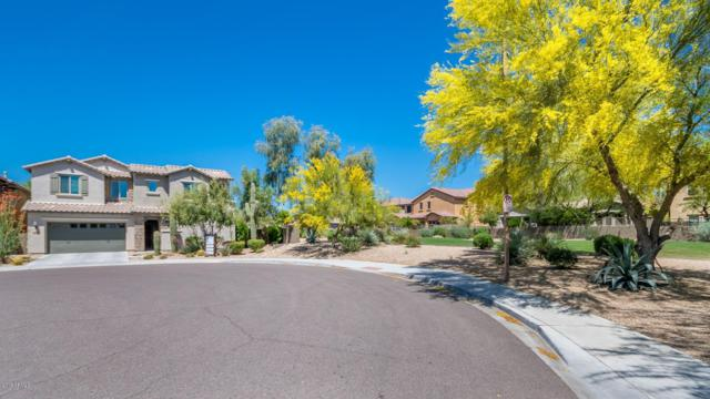 3792 E Covey Lane, Phoenix, AZ 85050 (MLS #5917020) :: CC & Co. Real Estate Team