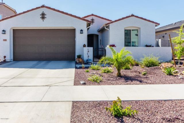 11002 N 190TH Drive, Surprise, AZ 85388 (MLS #5917045) :: Lux Home Group at  Keller Williams Realty Phoenix