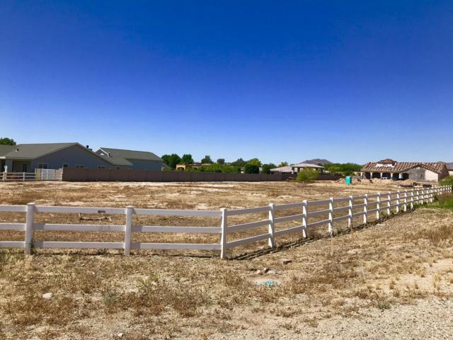 4934 N Perryville Road, Litchfield Park, AZ 85340 (MLS #5917072) :: Riddle Realty Group - Keller Williams Arizona Realty