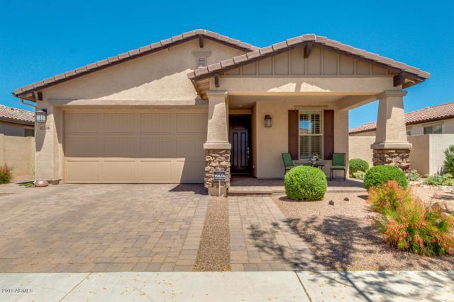 10308 E Tripoli Avenue, Mesa, AZ 85212 (MLS #5917100) :: Riddle Realty