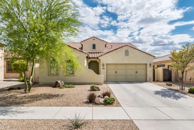 17027 W Hammond Street, Goodyear, AZ 85338 (MLS #5917105) :: Realty Executives