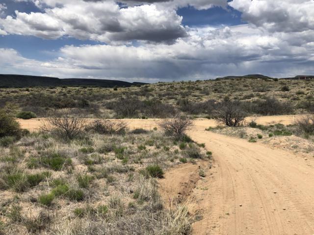 16195 W Rolling Hills Way, Kirkland, AZ 86332 (MLS #5917112) :: The Kenny Klaus Team