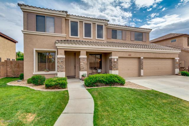 9219 W Alex Avenue, Peoria, AZ 85382 (MLS #5917124) :: Riddle Realty