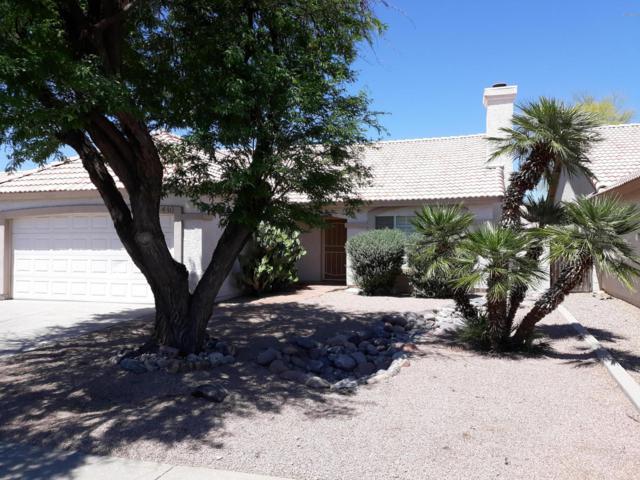 440 E Bart Drive, Chandler, AZ 85225 (MLS #5917282) :: Devor Real Estate Associates