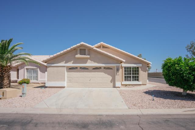 11520 W Tortoise Court, Surprise, AZ 85378 (MLS #5917367) :: Homehelper Consultants