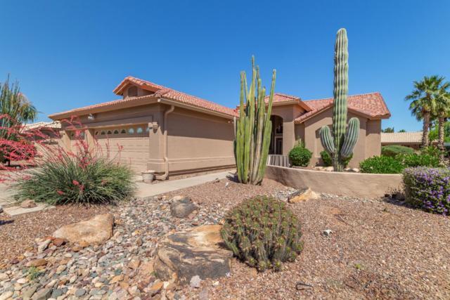 9542 E Sunridge Drive, Sun Lakes, AZ 85248 (MLS #5917404) :: The Kenny Klaus Team