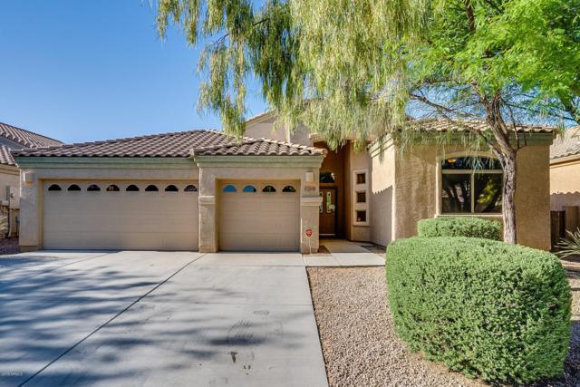 7008 W Fall Garden Way, Tucson, AZ 85757 (MLS #5917504) :: CC & Co. Real Estate Team