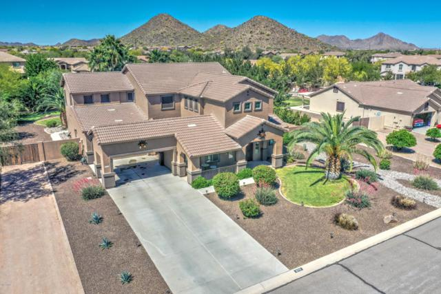 31712 N Shire Court, San Tan Valley, AZ 85143 (MLS #5917507) :: Arizona 1 Real Estate Team