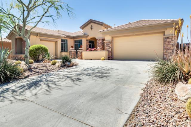 40112 N Candlewyck Lane, Phoenix, AZ 85086 (MLS #5917562) :: Riddle Realty