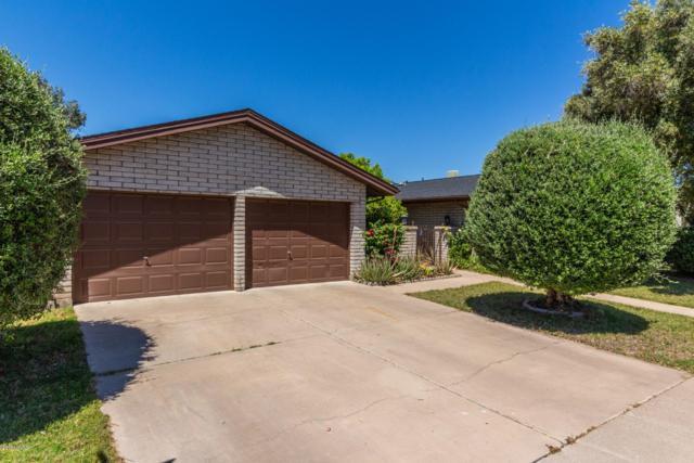 9818 N 43RD Drive, Glendale, AZ 85302 (MLS #5917609) :: CC & Co. Real Estate Team