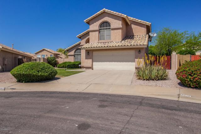 2442 S Augustine Circle, Mesa, AZ 85209 (MLS #5917632) :: CC & Co. Real Estate Team