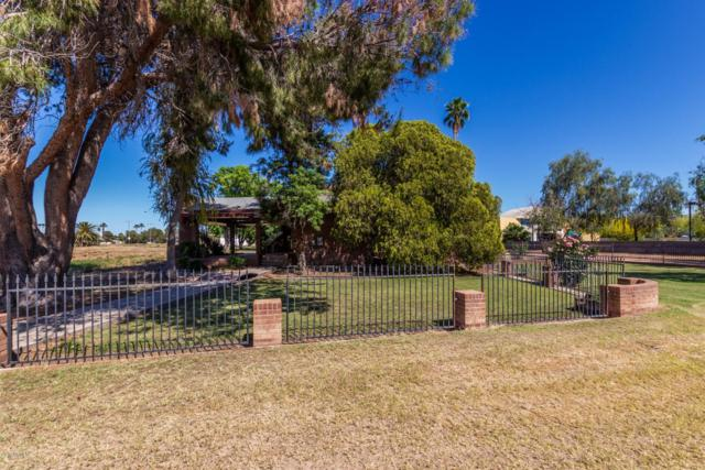 2019 N 91ST Place, Chandler, AZ 85224 (MLS #5917730) :: CC & Co. Real Estate Team