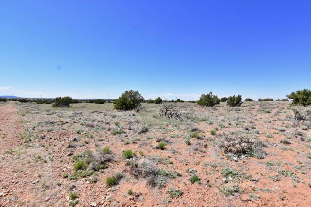 5776 Potatoe Pass Road, Winslow, AZ 86047 (MLS #5917793) :: Arizona Home Group