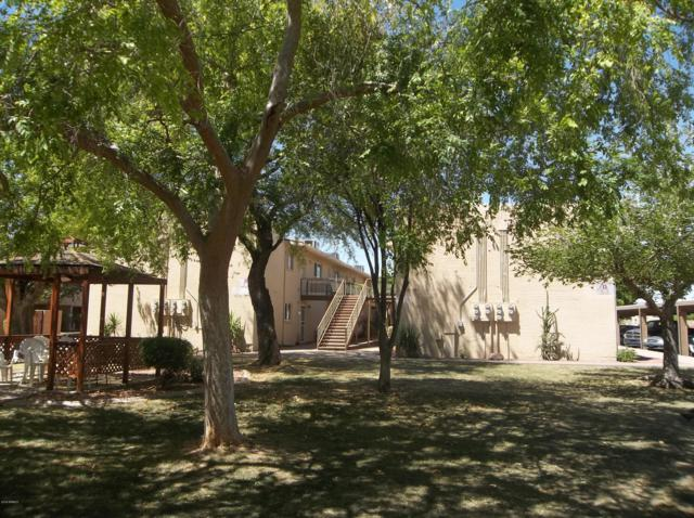815 N Hayden Road D205, Scottsdale, AZ 85257 (MLS #5917836) :: Brett Tanner Home Selling Team