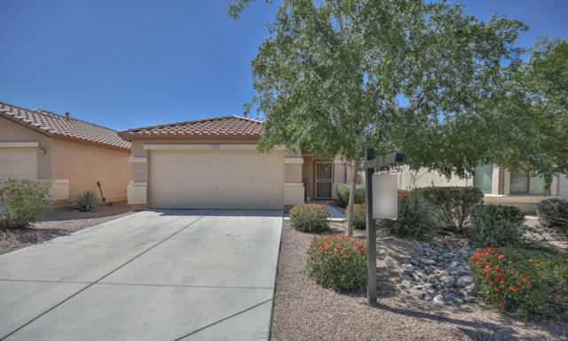 1331 E Estelle Lane, San Tan Valley, AZ 85140 (MLS #5917876) :: Devor Real Estate Associates