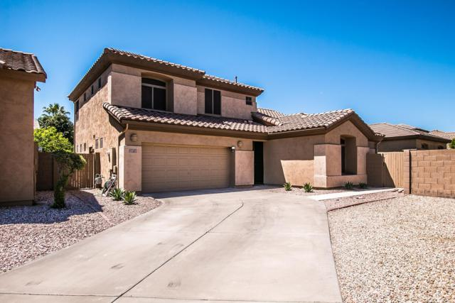 923 E Sheffield Avenue, Chandler, AZ 85225 (MLS #5917928) :: Riddle Realty