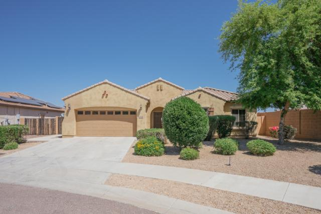 16734 W Mohave Street, Goodyear, AZ 85338 (MLS #5918038) :: The Everest Team at My Home Group