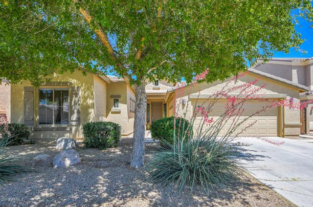 266 W Blue Lagoon Drive, Casa Grande, AZ 85122 (MLS #5918222) :: The W Group