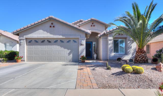 2391 E Antigua Drive, Casa Grande, AZ 85194 (MLS #5918260) :: CC & Co. Real Estate Team
