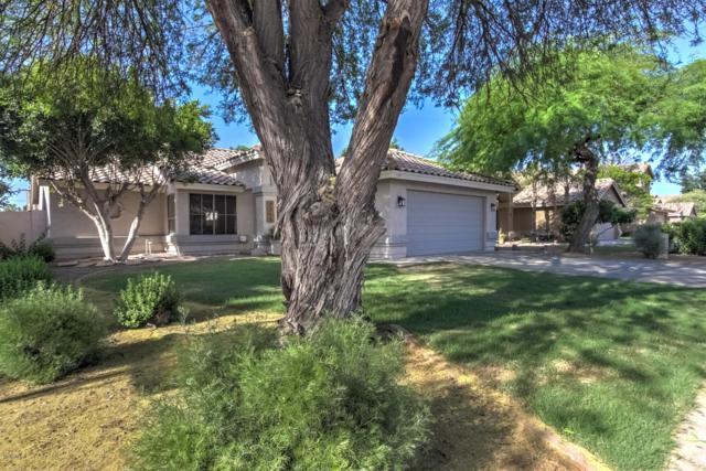7255 E Nopal Avenue, Mesa, AZ 85209 (MLS #5918281) :: The Bill and Cindy Flowers Team