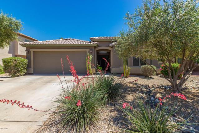 22177 N Kingston Drive, Maricopa, AZ 85138 (MLS #5918300) :: CC & Co. Real Estate Team