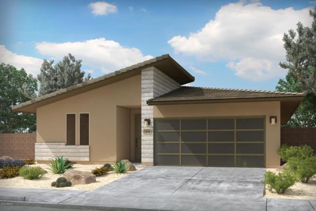 17636 N Rosa Drive, Maricopa, AZ 85138 (MLS #5918357) :: Revelation Real Estate