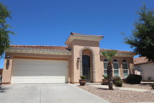 2424 E Desert Broom Place, Chandler, AZ 85286 (MLS #5918368) :: The W Group