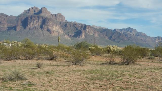 21XX E Foothill Street, Apache Junction, AZ 85119 (MLS #5918471) :: Brett Tanner Home Selling Team