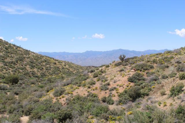 000 N Wagon Bow Ranch Road, Wikieup, AZ 85360 (MLS #5918511) :: The Kenny Klaus Team