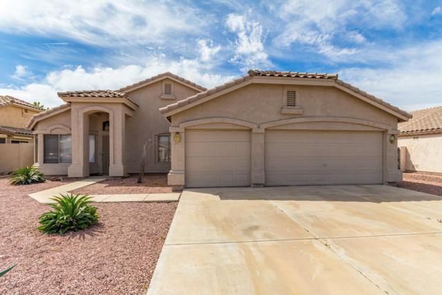 8371 W Maryland Avenue, Glendale, AZ 85305 (MLS #5918535) :: Occasio Realty