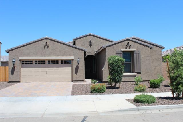 20088 E Domingo Road, Queen Creek, AZ 85142 (MLS #5918629) :: Riddle Realty