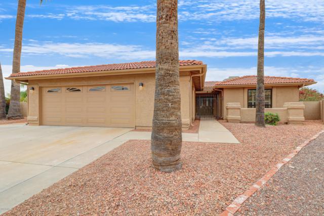 10323 E Twilight Court, Sun Lakes, AZ 85248 (MLS #5918676) :: Yost Realty Group at RE/MAX Casa Grande